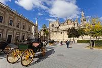 スペイン セビリア カテドラル