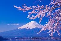 山梨県 桜と富士山と河口湖