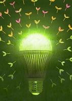 LED電球のエコロジー