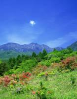 山梨県・北杜市 美し森よりツツジと八ヶ岳
