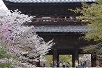 京都府 京都市 三門 南禅寺