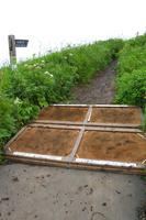 礼文島・桃岩展望台コース入口の外来植物防止マット 北海道