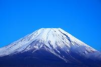日本 静岡県 朝霧高原から冠雪の富士山