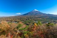 山梨県 紅葉台から紅葉と富士山