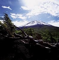 山梨県 富士山 五合目奥庭から