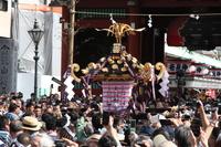 三社祭 宮神輿渡御