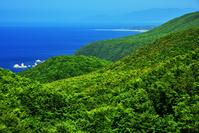 夏の勝澗岬
