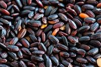 古代米 赤米