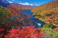 新潟県 紅葉の奥只見湖と遊覧船と駒ヶ岳(越後駒ヶ岳)