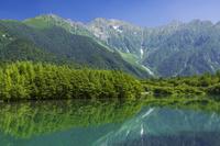 長野県 上高地大正池