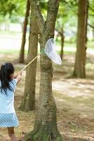 虫取りをする日本人の子供