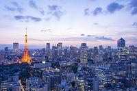 東京都 東京タワーとビル群 トワイライト夜景