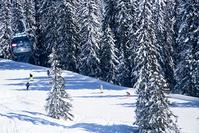オーストリア ピンツガウ