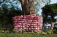 神奈川県 江島神社 絵馬