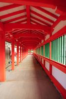 島根県 出雲市 日御碕神社