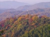 岡山県 備中松山城