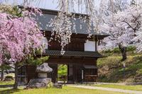 長野県 飯山城址