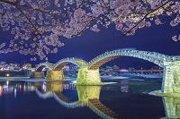 日本 山口県 錦帯橋