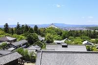 奈良県 東大寺 二月堂から見る境内の瓦屋根と大仏殿