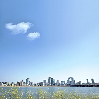 淀川河川敷より梅田ビル群(グランフロント大阪)を望む