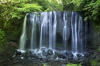 福島県 達沢不動滝
