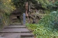 神奈川県 円覚寺 白鹿洞