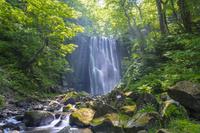 秋田県 亀田不動の滝