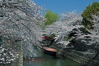 岐阜県 水門川と奥の細道むすびの地