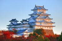 兵庫県 姫路城に夕陽が照る