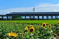 岐阜県 新幹線