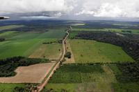ブラジル アマゾン川流域 大豆畑の拡大