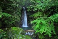 鹿児島県さつま町紫尾山 一の瀬滝