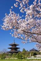 奈良県 法起寺三重塔