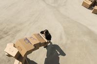 段ボールを運ぶ女性