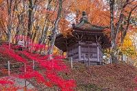 愛知県 香嵐渓の太子堂
