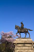 桜と伊達政宗騎馬像 仙台市