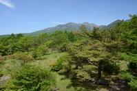 山梨県 清里高原 美し森 春の高原と北八ヶ岳