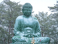 石川県 能登大仏