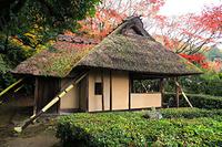 京都府 金福寺 芭蕉庵と紅葉