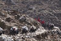 ネパール トゥクラ