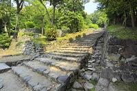 滋賀県 安土城跡 大手道跡の石段と伝羽柴秀吉邸跡の石垣