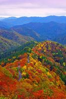 滋賀県 高島市 錦秋のおにゅう峠からの山並