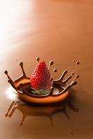 チョコレートクラウンとイチゴ