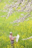 桜とシニアの日本人男性