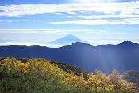 静岡県 富士見平 朝の富士山と紅葉の山並み
