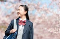 春に桜を眺める女子高校生