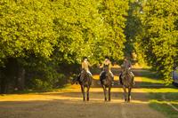 イングランド ロンドン 乗馬