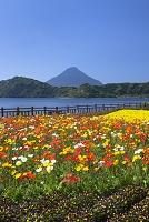 鹿児島県 池田湖畔と開聞岳