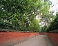 中国・成都 杜甫草堂 赤壁と竹林