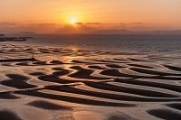 熊本県 夕景の御輿来海岸の干潟と島原半島